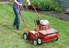 How To Renovate Your Lawn With Grass Seed