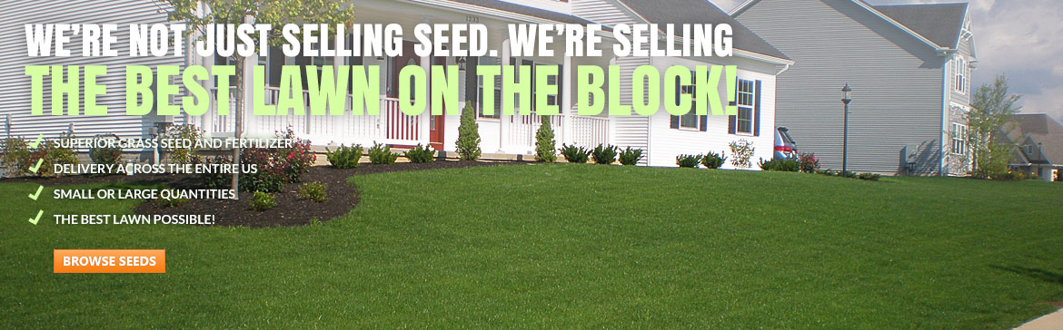 Seed Super Store, grass seed
