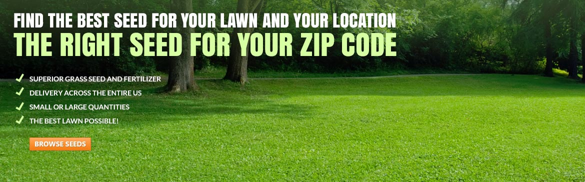 Best Lawn Fertilizer >> Seed Super Store, grass seed